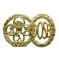 sportabzeichen_gold